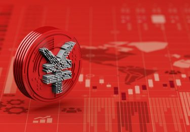 Digitizing the Renminbi